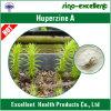 Extrato natural Huperzine-a de Huperzia Serrata