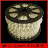 온난한 White 100m 2 Wire Flat Rope LED Light