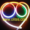 360 도 코드 LED 네온 밧줄 빛의 둘레에 12V/24V/120V/240V