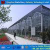 야채를 위한 상업적인 Hydroponic 유리제 녹색 집