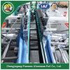 Machine automatique de Gluer de dépliant de série de Chaud-Vente de qualité