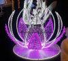 Weißes Seil-Licht der Farben-30LEDs 2W/M LED/im FreienLight/LED Streifen-Licht/Neonlicht/Weihnachtslicht/Feiertags-Licht/Hotel-Licht/Streifen des Stab-heller Umlauf-zwei der Draht-LED