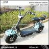 Motorino elettrico Harley 2017 Cochi della città di 1000/1500W 12ah 20ah