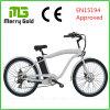 남자를 위한 합금 6061 프레임 Ebike 바닷가 함 전기 자전거 36V 250W