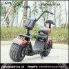 Dos Cocos baratos da cidade de China trotinette elétrico de Harley para adultos