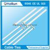Type libérable de serre-câble de l'acier inoxydable 201 pour la télécommunication