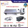 315W CMH 전자 밸러스트를 가진 온실 식물 성장하고 있는 전등 설비 315W