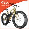 安い販売のための熱い脂肪電気バイクLmtdf-23L