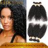 Maagdelijke Haar van de Mink van het Haar van de goede Kwaliteit het Krullende Braziliaanse