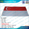 Kundenspezifische Polyester-Singapur-Staatsflagge (M-NF05F09025)