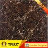 Mármol de alta calidad Mira suelo de azulejo pulido (TP8807)