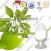 Extrait normal de feuilles de ginseng de Panax des prix en bloc de fabricant