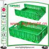 Caixa plástica Foldable e Stackable do armazenamento