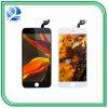Schermo all'ingrosso dell'affissione a cristalli liquidi del telefono mobile per il iPhone 6s