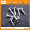 Precio de fábrica anti del moho Ss 316 tornillos de 3/4  ~4  socket principales del botón