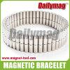 Pulsera magnética (DMJ-B100A)