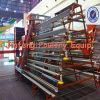 Pollo Laying Cages (9LTD-4-1960-34)
