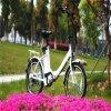 Regulador de pressão e PAS que dobram a bicicleta de E