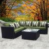 Insieme sezionale del sofà del patio della resina del rattan esterno di vimini del giardino
