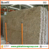 Giallo naturale Veneziano Granite Stone Tile per Interior Wall/Floor