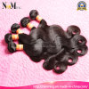 Doppeltes Drawn 6A Grade Virgin Hair brasilianisches Body Wave Menschenhaar Weft
