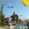 viento de los 9m LED más luz híbrida solar de la calle LED