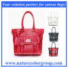 Manier Dame Leather Handbags met Klinknagels (hb-019)