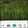 زخرفيّة محترفة طبيعة اللون الأخضر حد اصطناعيّة عشب مرج