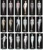 De Ledenpoppen van uitstekende kwaliteit met Goede Prijs 09054