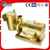 Handelsswimmingpool-Wasser-Filtration 3HP zur kupfernen Pumpe 15HP