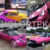 La pintura industrial del coche de la perla colorea el fabricante del pigmento
