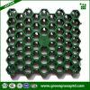 Réseau de verrouillage d'herbe en plastique de HDPE réutilisé par 100%