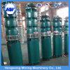 Bomba de água elétrica da irrigação agricultural de QS