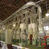 30tpd/50tpd/100tpd/200tpd/300tpd /400tpd 500tpd complètent l'usine clés en main de rizerie