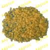 Ci de la resina (GC-100)