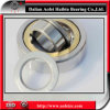 Supply China Manufacturer NUP336M Cylindrical Roller Bearing