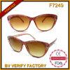 F7249 ontwerpt de Kleurrijke Zonnebril de Beste Glazen van de Zon