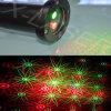 De rode en Groene Bewegende Laser van de Tuin van Kerstmis van Acht Bloem