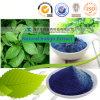 Poudre normale de colorant de bleu d'indigo de fabricant chinois