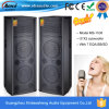 15 pollici Bass *2 Speaker con SD/Seven EQ Regulation Function