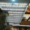 Aluminum perforato Ceiling Panels con Decorative Hollow Patterns