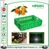 Scomparti pieghevoli di plastica degli scomparti di plastica di giro d'affari per frutta di verdure