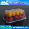Contenitore di alimento di plastica a perdere di microonda