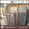 Losa de mármol negra fósil material estable con buen precio