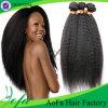 최고 질 Virgin 사람의 모발 자연적인 까만 몽고 머리 가발