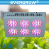 Fabbrica Wholesale 270watt Grow LED Light