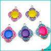 De kleurrijke Juwelen van de Tegenhanger van het Email (MPE)