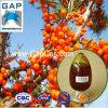 Hersteller-Zubehör Seabuckthorn Startwert- für Zufallsgeneratorschmieröl