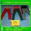 Amerikanische verwendete Kleidung verwendete Winter-Kleidung-Ausdehnungs-Hosen mit Form-Entwurf