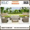 Sofà di vimini impostato/sofà di vimini stabilito disegni 2013/PE del sofà (SC-A7406)